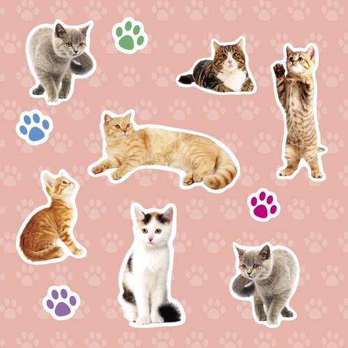 Wypukłe Naklejki Koty 20...