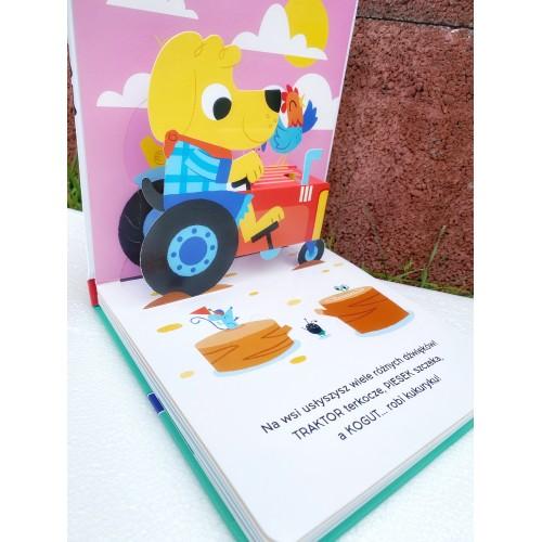 Książka Ruchome obrazki -...