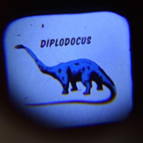 Projektor Latarka Dinozaury...